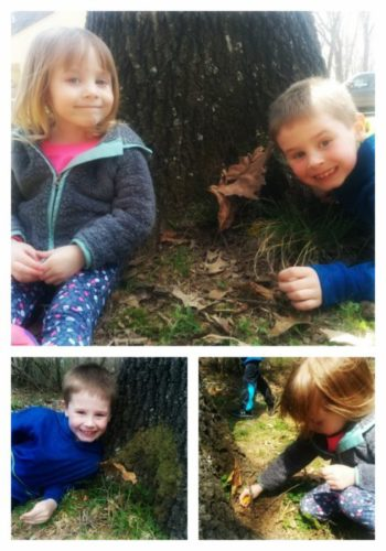 Tinley and Cooper's Fairy House