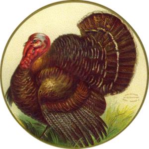 thanksgivingtea2